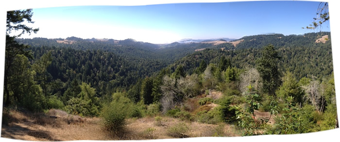 View from the top of Willow Creek Watershed