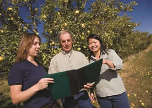 orchard owner planning conservation strategies with RCD staff