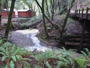 Poor water quality in Salmon Creek after rains